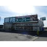 業務スーパー大山店:徒歩8分(582m)(周辺)